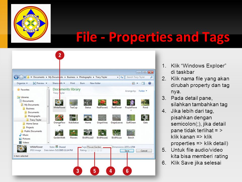 File - Properties and Tags