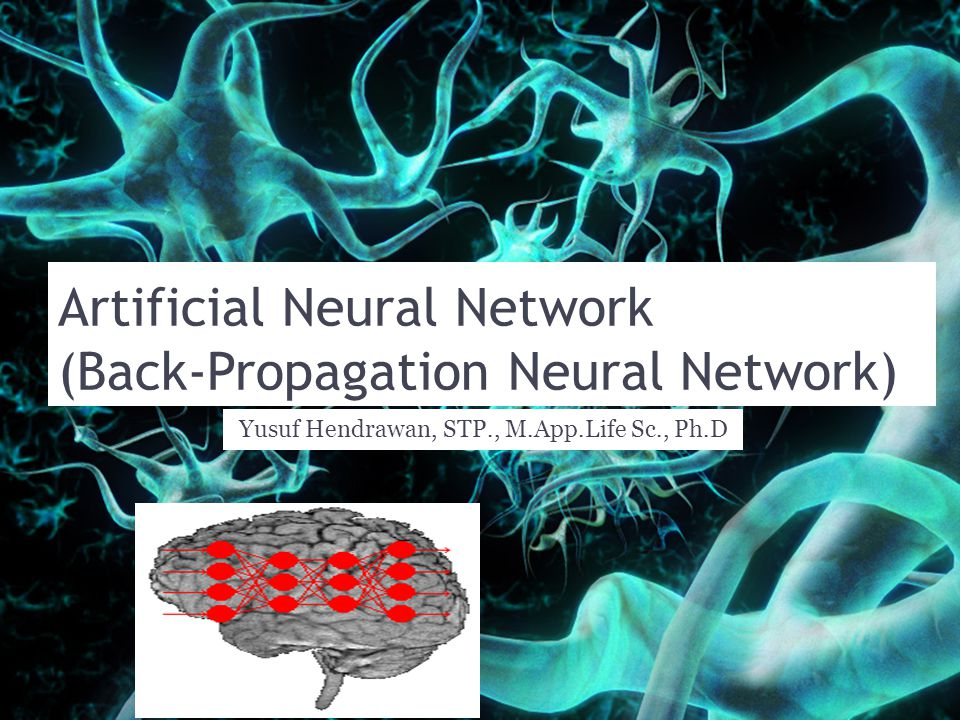 Artificial Neural Network (Back-Propagation Neural Network)