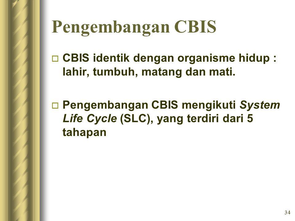 Pengembangan CBIS CBIS identik dengan organisme hidup : lahir, tumbuh, matang dan mati.