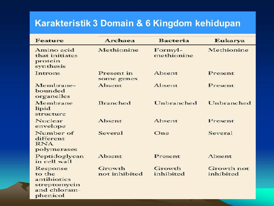 Karakteristik 3 Domain & 6 Kingdom kehidupan