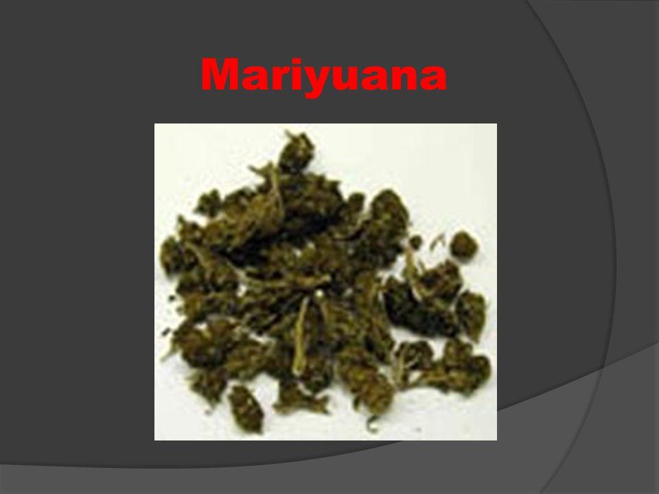 Mariyuana