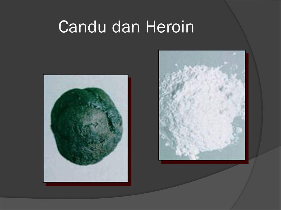 Candu dan Heroin