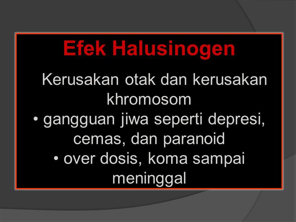 Efek Halusinogen Kerusakan otak dan kerusakan khromosom