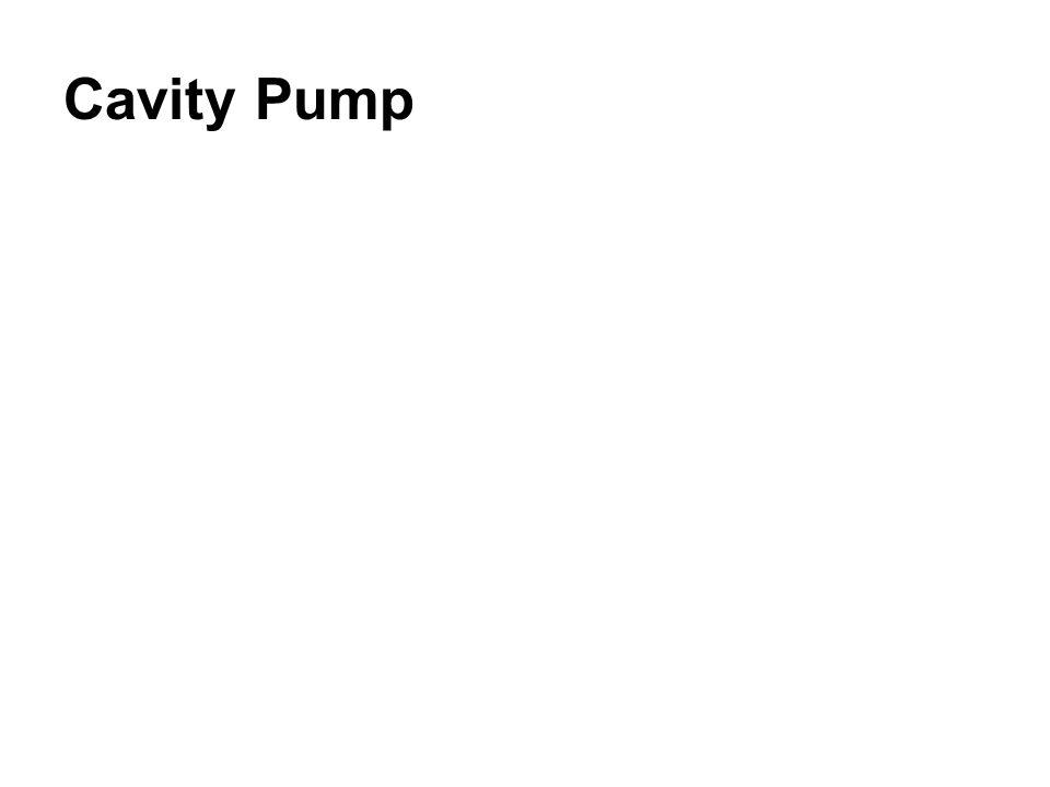 Cavity Pump