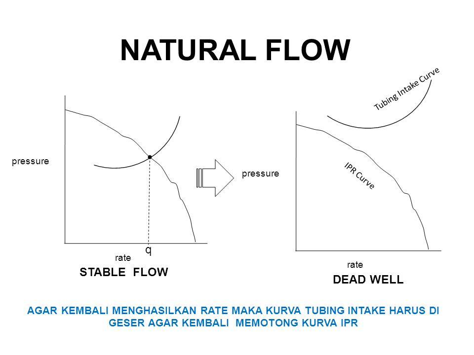 NATURAL FLOW q STABLE FLOW DEAD WELL