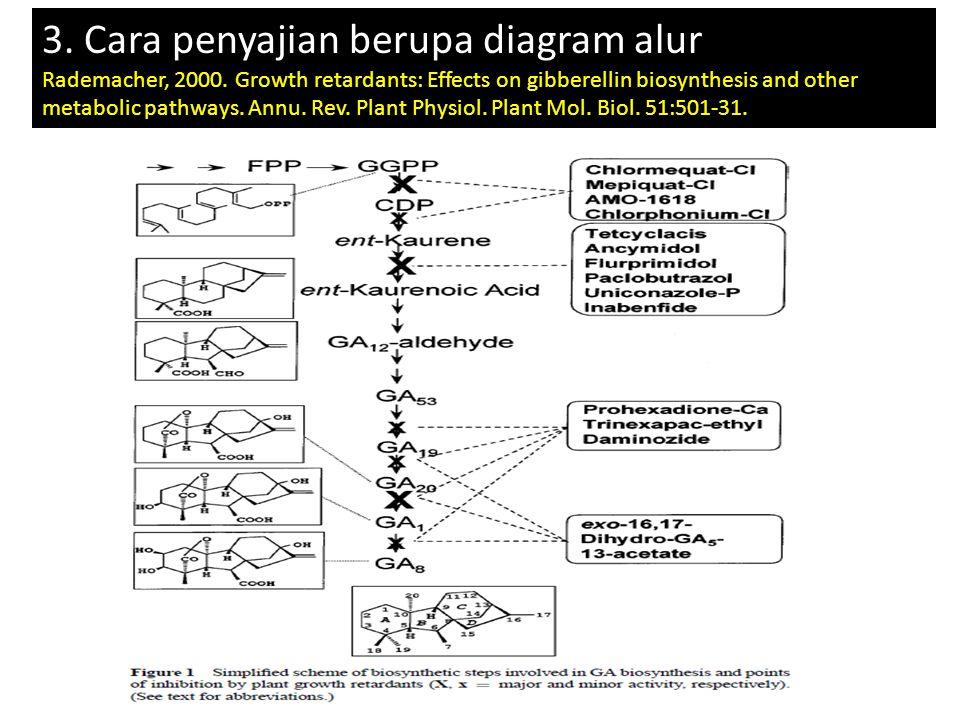 3. Cara penyajian berupa diagram alur
