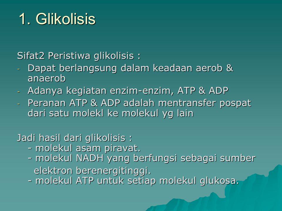 1. Glikolisis Sifat2 Peristiwa glikolisis :