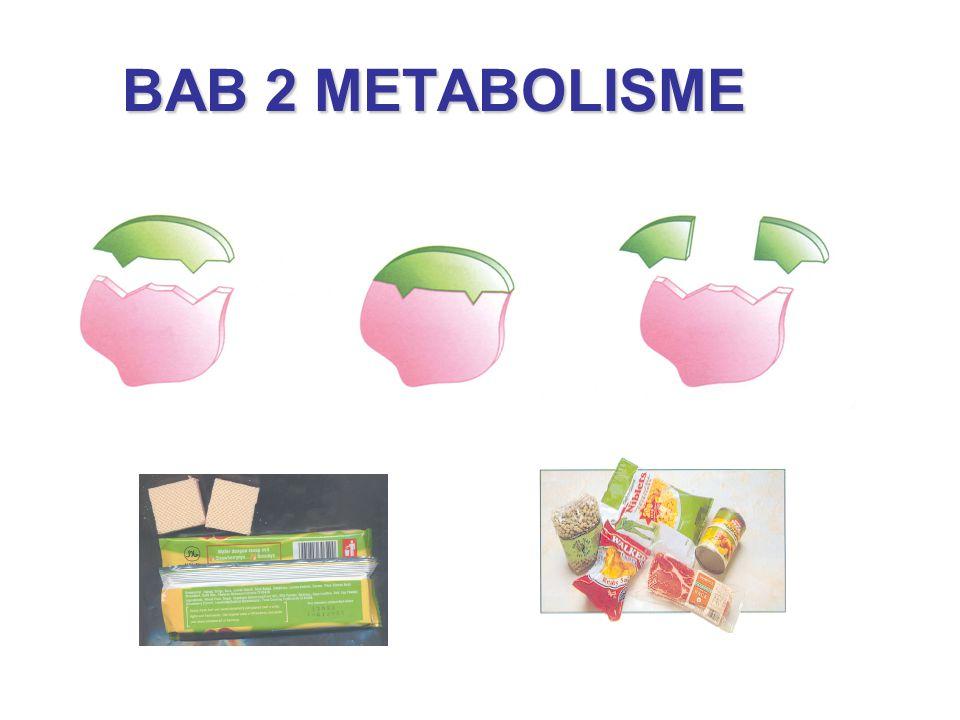 BAB 2 METABOLISME