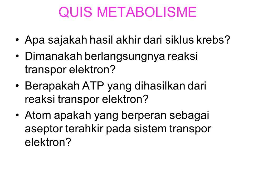 QUIS METABOLISME Apa sajakah hasil akhir dari siklus krebs