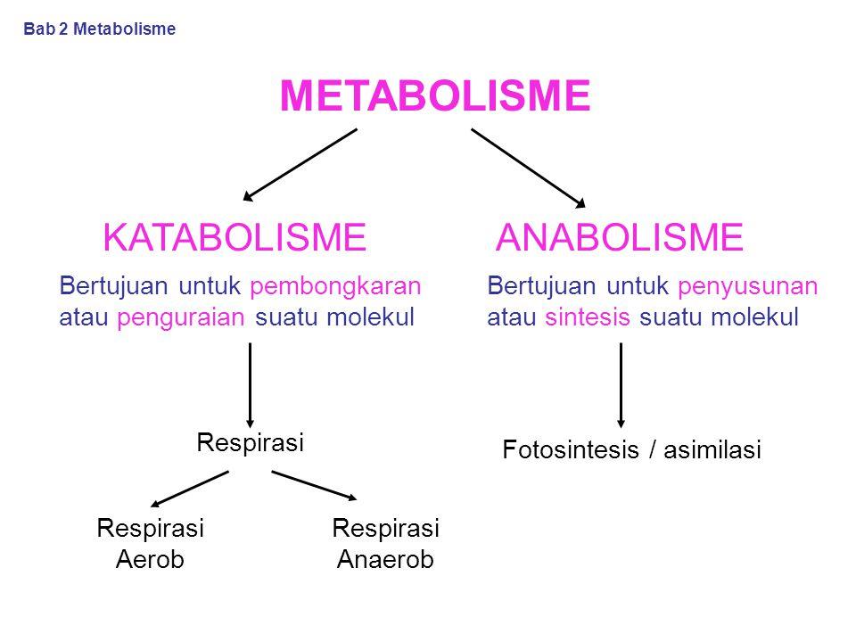 Fotosintesis / asimilasi