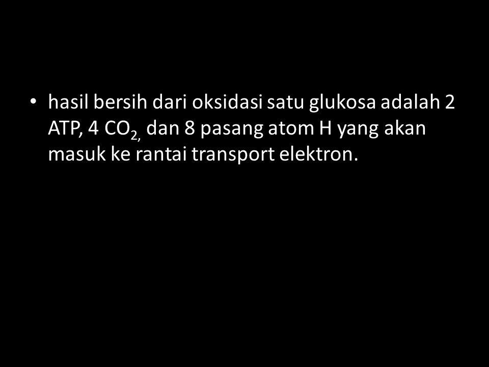hasil bersih dari oksidasi satu glukosa adalah 2 ATP, 4 CO2, dan 8 pasang atom H yang akan masuk ke rantai transport elektron.