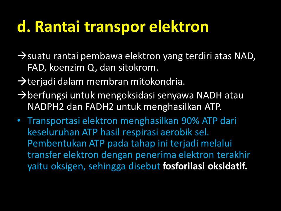 d. Rantai transpor elektron