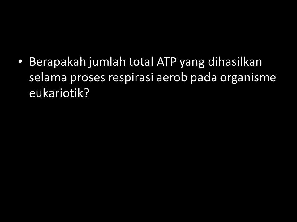 Berapakah jumlah total ATP yang dihasilkan selama proses respirasi aerob pada organisme eukariotik
