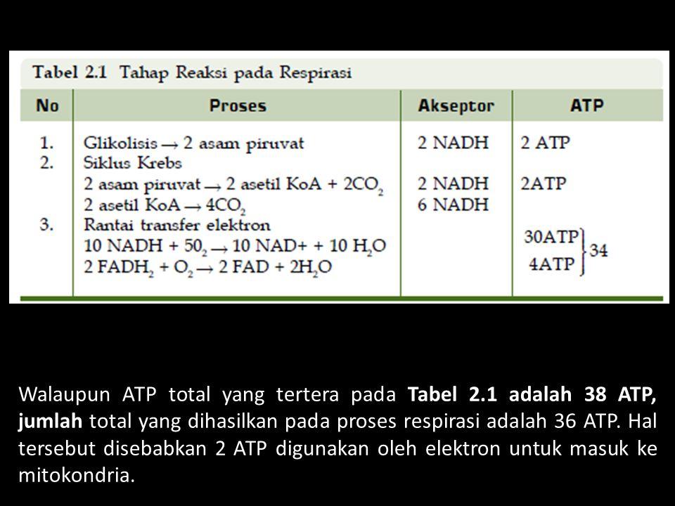 Walaupun ATP total yang tertera pada Tabel 2