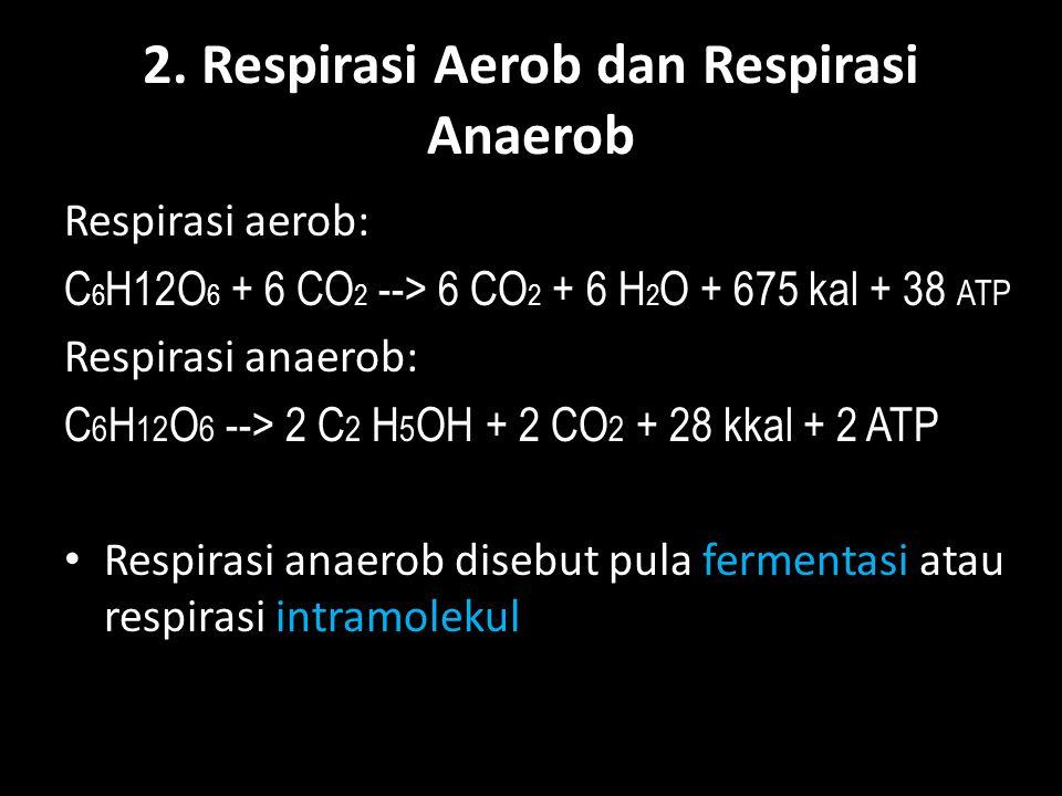 2. Respirasi Aerob dan Respirasi Anaerob