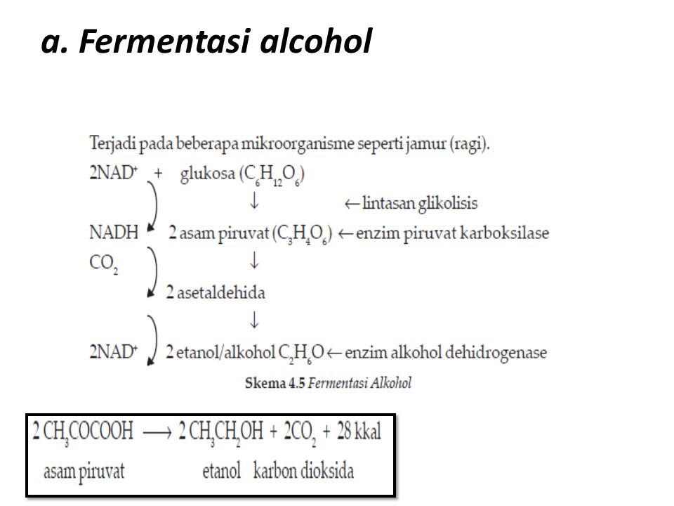 a. Fermentasi alcohol