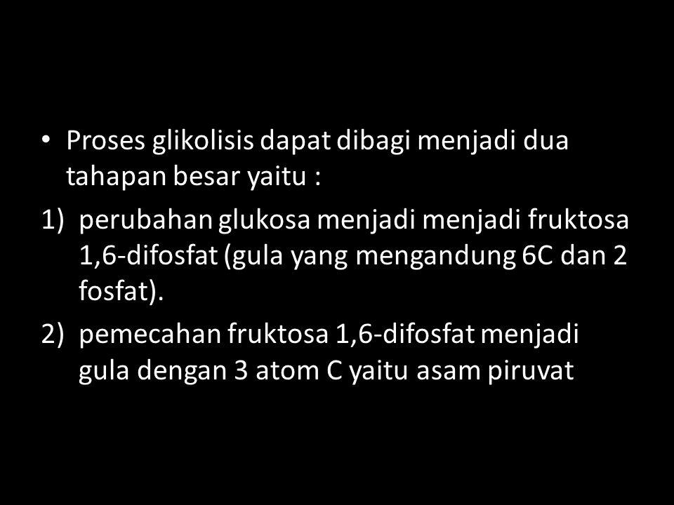 Proses glikolisis dapat dibagi menjadi dua tahapan besar yaitu :