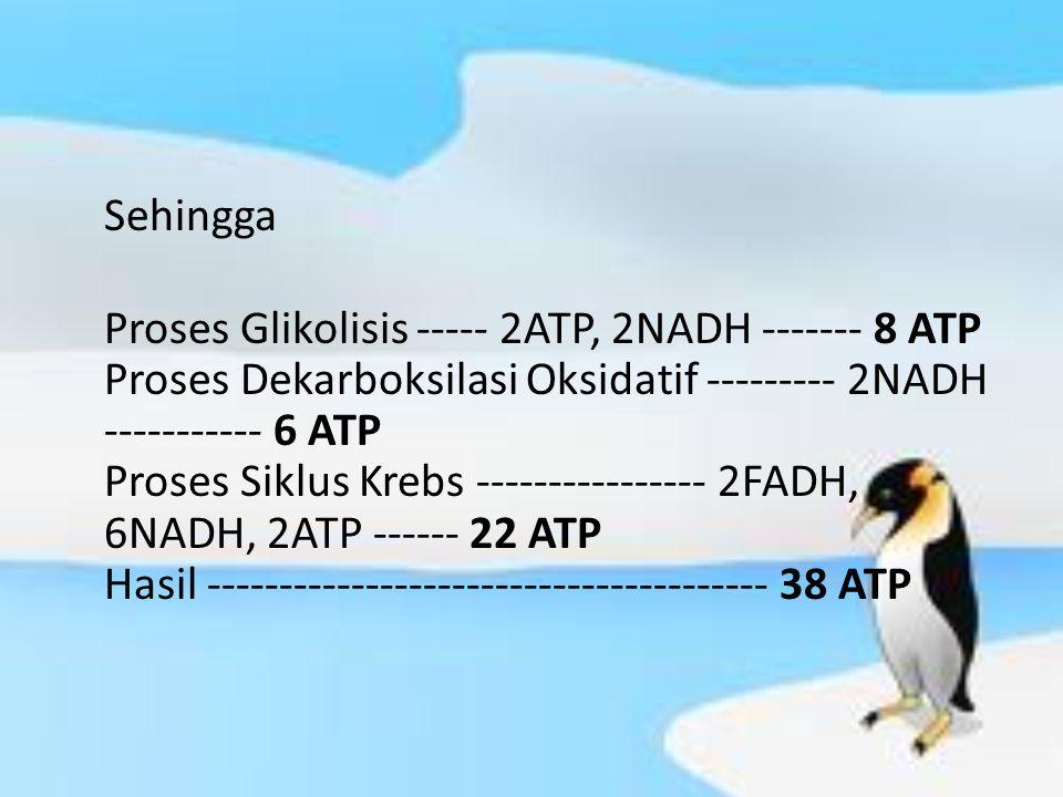 Sehingga Proses Glikolisis ----- 2ATP, 2NADH ------- 8 ATP Proses Dekarboksilasi Oksidatif --------- 2NADH ----------- 6 ATP Proses Siklus Krebs ---------------- 2FADH, 6NADH, 2ATP ------ 22 ATP Hasil --------------------------------------- 38 ATP