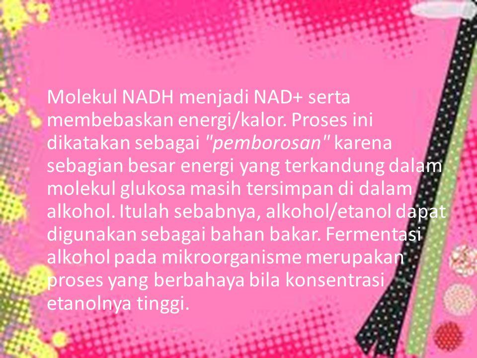 Molekul NADH menjadi NAD+ serta membebaskan energi/kalor
