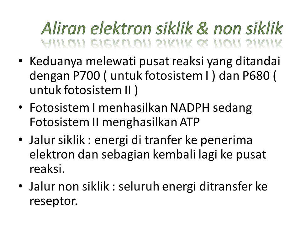 Aliran elektron siklik & non siklik