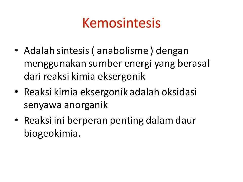 Kemosintesis Adalah sintesis ( anabolisme ) dengan menggunakan sumber energi yang berasal dari reaksi kimia eksergonik.