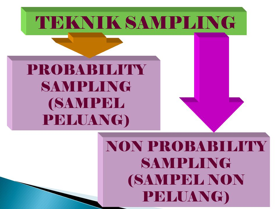 TEKNIK SAMPLING PROBABILITY SAMPLING (SAMPEL PELUANG)