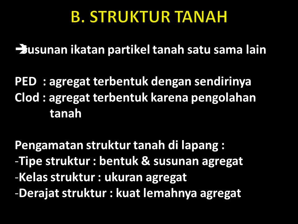 B. STRUKTUR TANAH Susunan ikatan partikel tanah satu sama lain