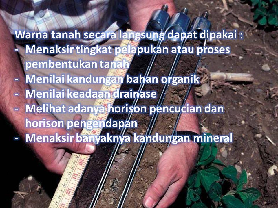 Warna tanah secara langsung dapat dipakai :