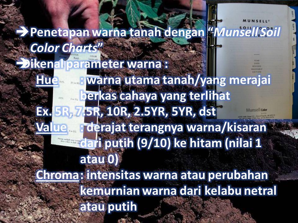 Penetapan warna tanah dengan Munsell Soil Color Charts