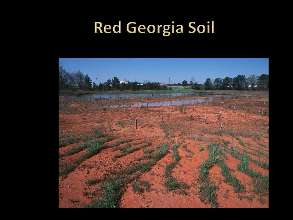 Red Georgia Soil The red clay color is from weathering.