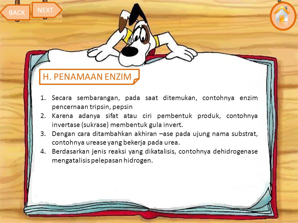 H. PENAMAAN ENZIM NEXT BACK