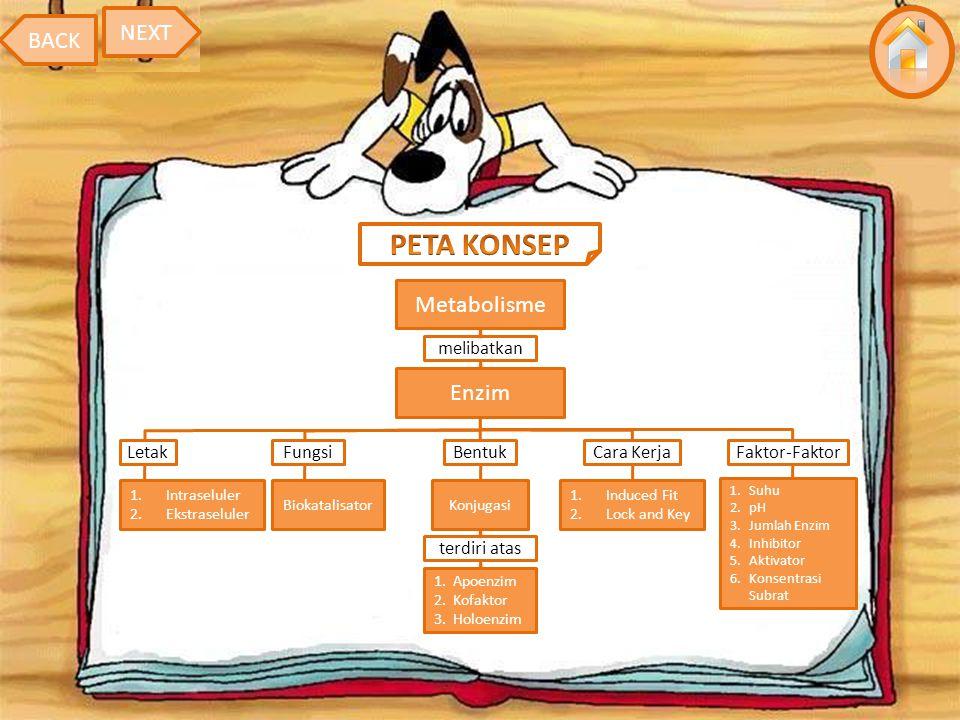 PETA KONSEP NEXT BACK Metabolisme Enzim melibatkan Letak Fungsi Bentuk
