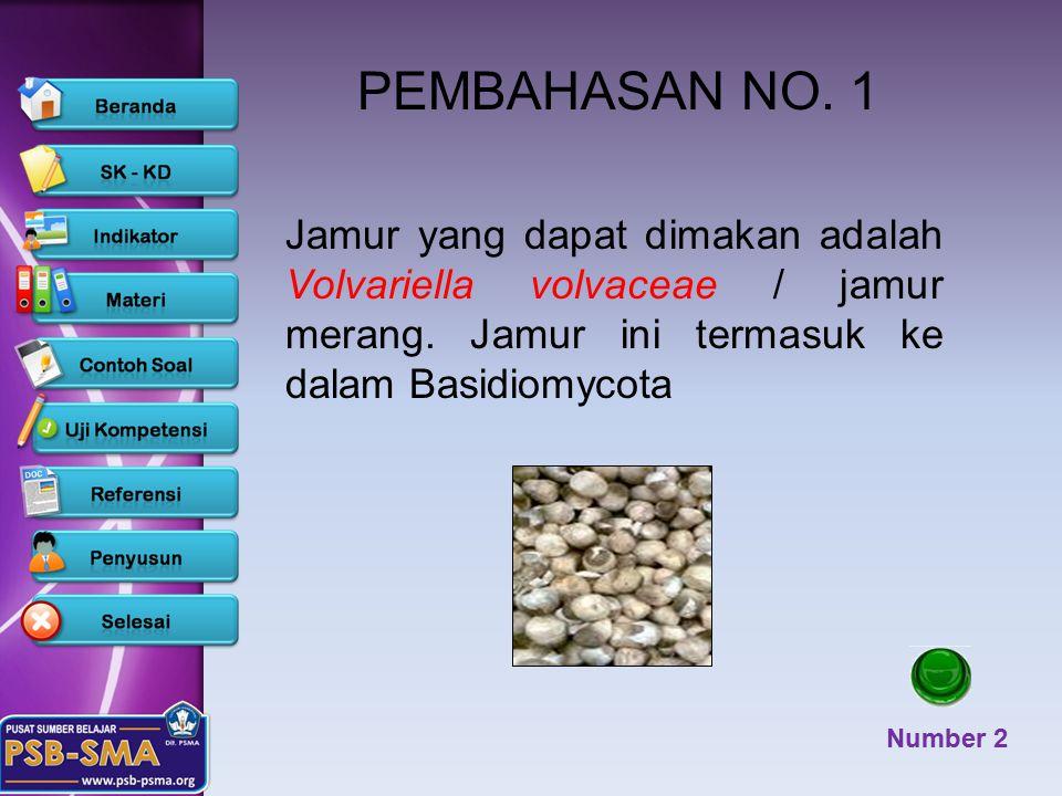PEMBAHASAN NO. 1 Jamur yang dapat dimakan adalah Volvariella volvaceae / jamur merang. Jamur ini termasuk ke dalam Basidiomycota.