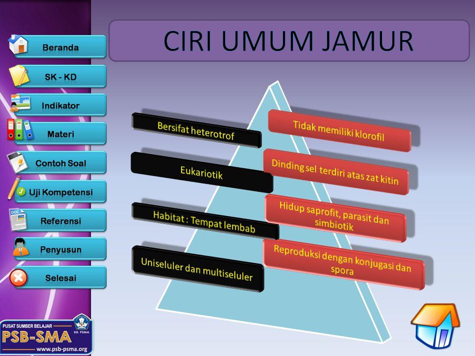 CIRI UMUM JAMUR Tidak memiliki klorofil Bersifat heterotrof