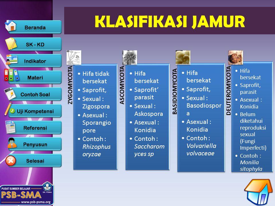 KLASIFIKASI JAMUR Hifa tidak bersekat Saprofit, Sexual : Zigospora