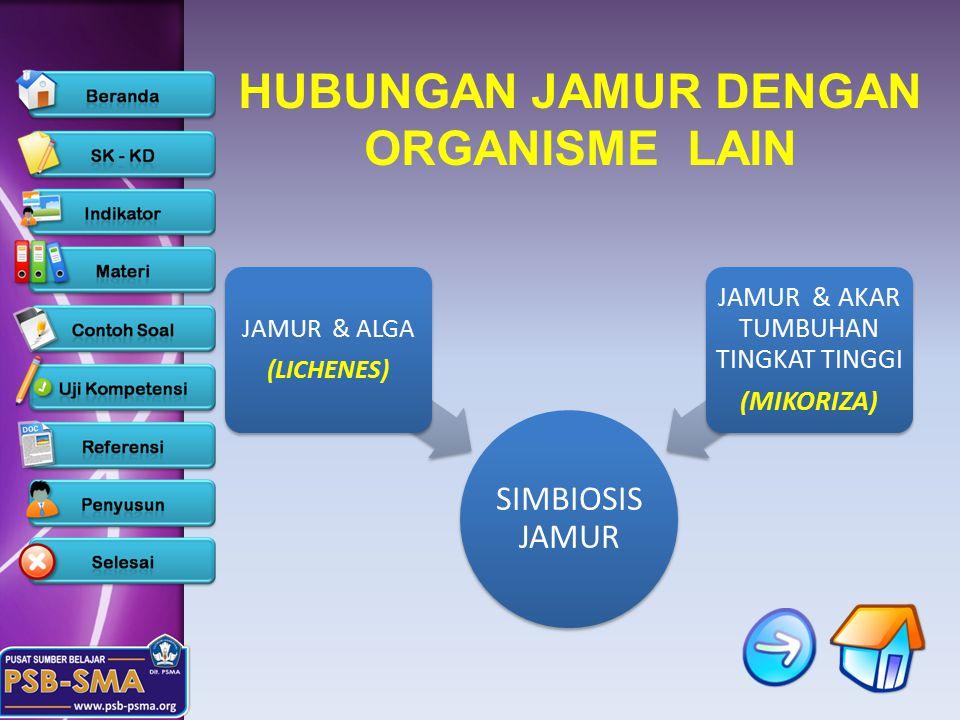 HUBUNGAN JAMUR DENGAN ORGANISME LAIN