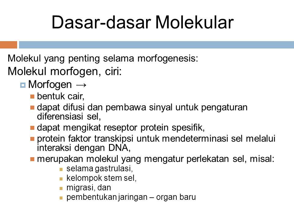Dasar-dasar Molekular