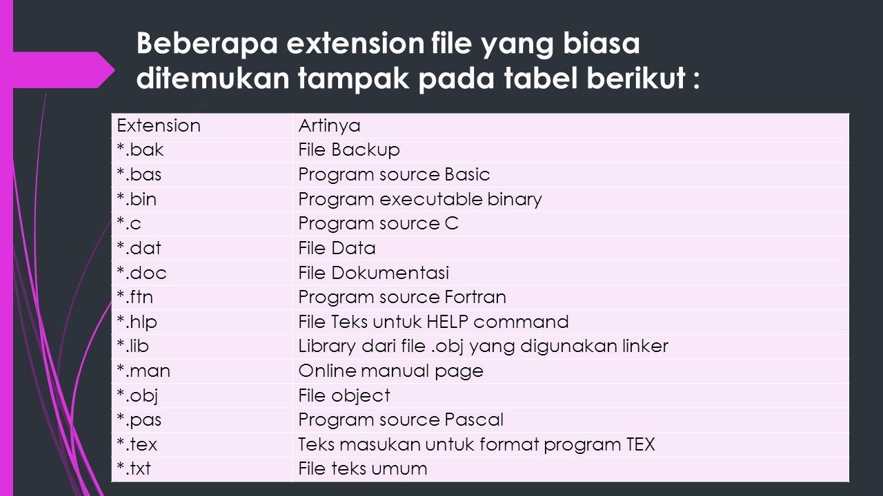 Beberapa extension file yang biasa ditemukan tampak pada tabel berikut :