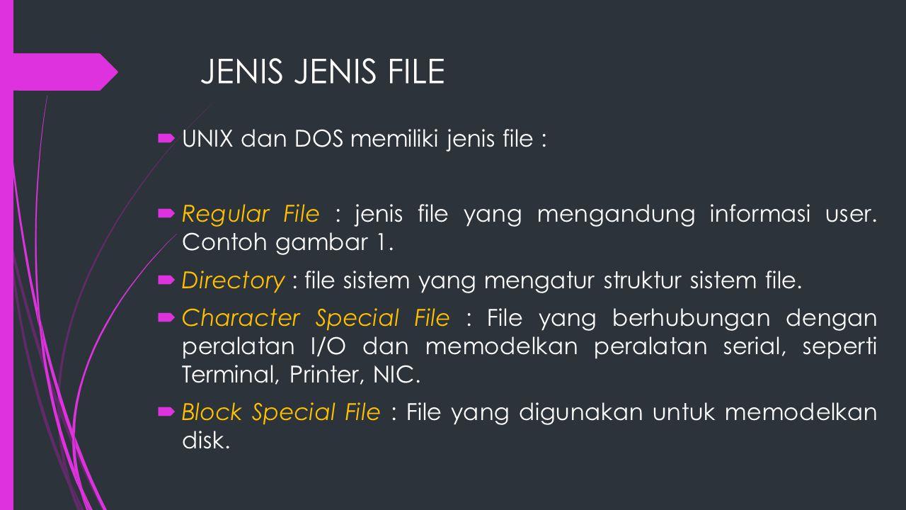 JENIS JENIS FILE UNIX dan DOS memiliki jenis file :