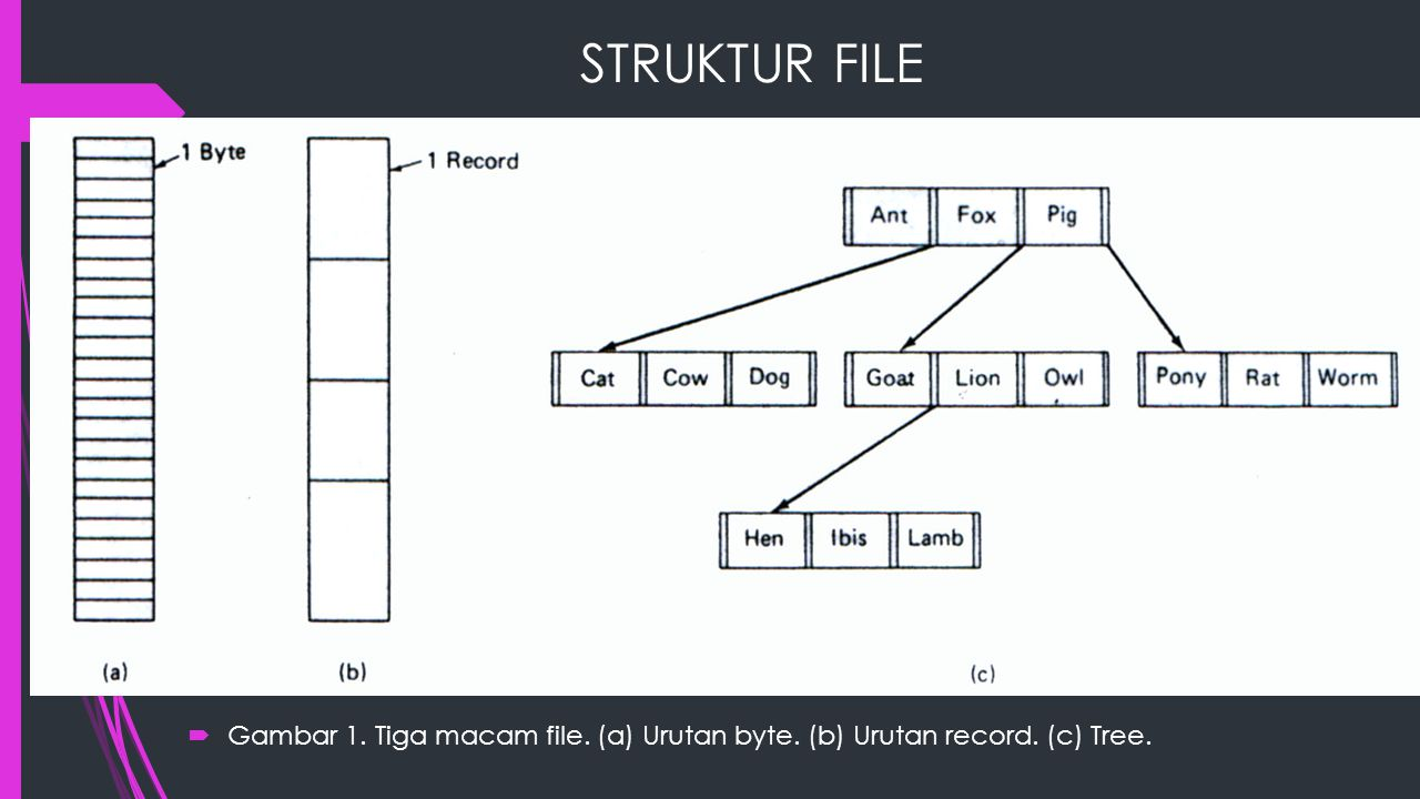 STRUKTUR FILE Gambar 1. Tiga macam file. (a) Urutan byte. (b) Urutan record. (c) Tree.