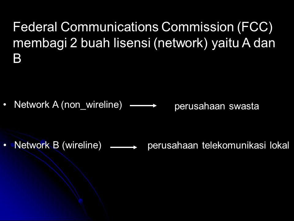 Federal Communications Commission (FCC) membagi 2 buah lisensi (network) yaitu A dan B