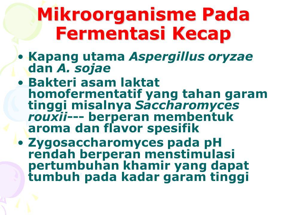Mikroorganisme Pada Fermentasi Kecap
