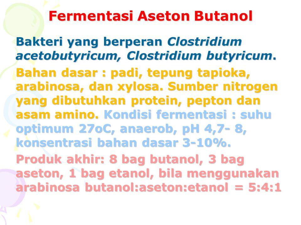 Fermentasi Aseton Butanol