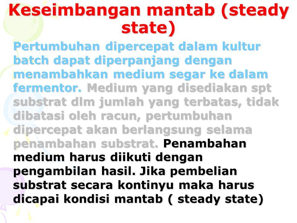 Keseimbangan mantab (steady state)