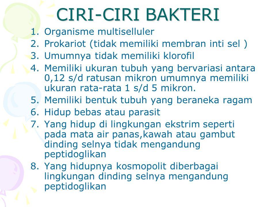 CIRI-CIRI BAKTERI Organisme multiselluler