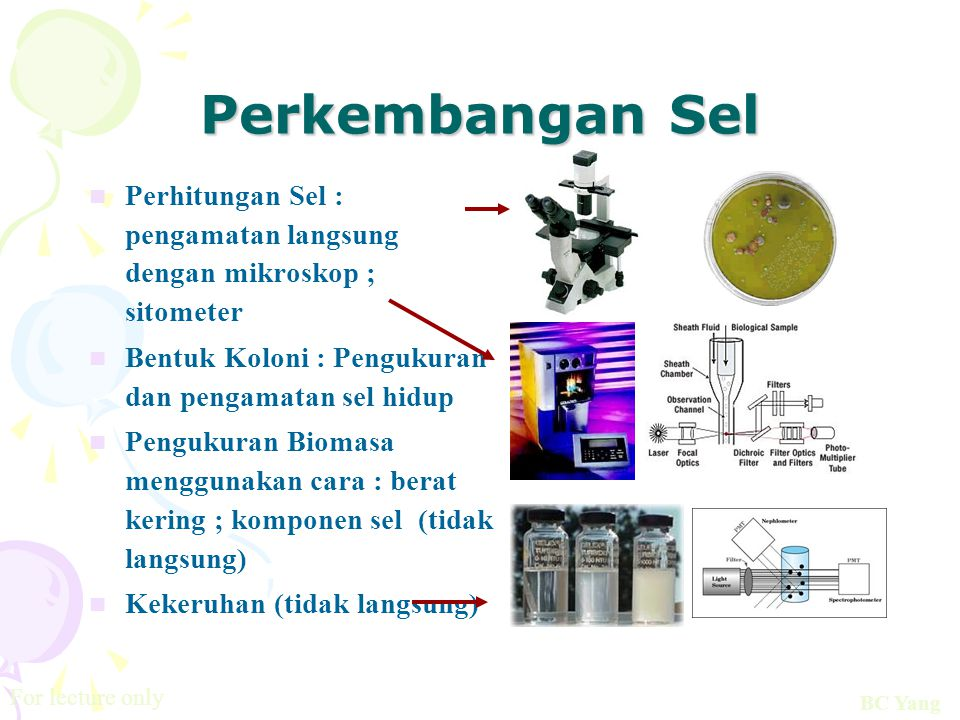 Perkembangan Sel Perhitungan Sel : pengamatan langsung dengan mikroskop ; sitometer. Bentuk Koloni : Pengukuran dan pengamatan sel hidup.