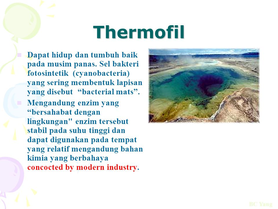 Thermofil
