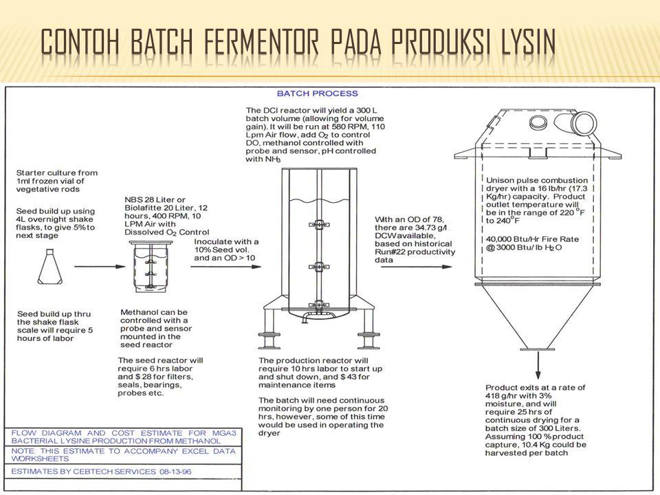 Contoh batch fermentor pada produksi lysin