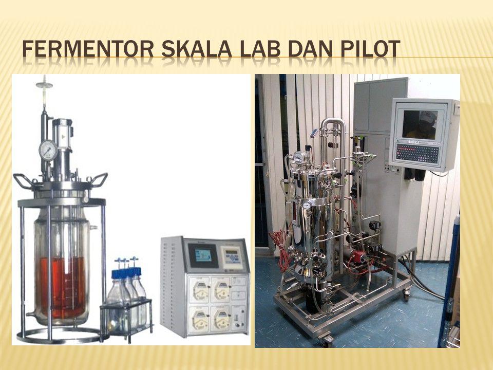 Fermentor skala lab dan pilot