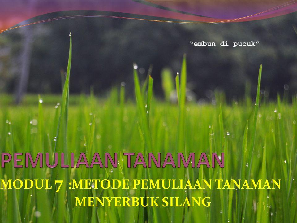 MODUL 7 :METODE PEMULIAAN TANAMAN MENYERBUK SILANG